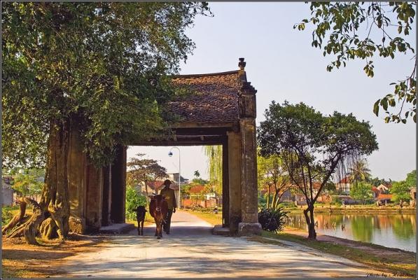 cho-thue-xe-di-lang-co-duong-lam-gia-re (14)
