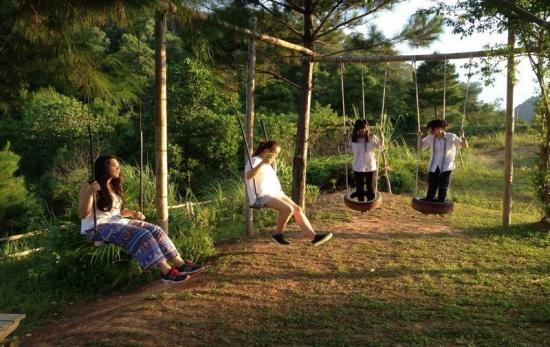 Cho Thue Xe đi Zen Resort Ba Vi Gia Rẻ